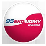 95-ekonomy
